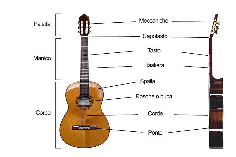 Le parti della chitarra